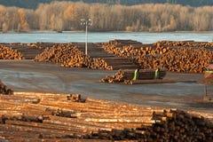 Large Timber Wood Log Lumber Processing Plant Riverside Columbia. Timber Wood Log Lumber Processing Plant Riverside Columbia River Stock Photos