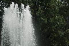 Large top of fountain jet gushing upwards. Against green foliage stock images