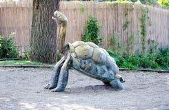 Large tortoise statue stock photography