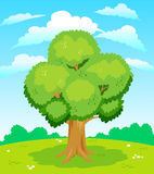 Large tree Royalty Free Stock Photography