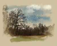A large tree at the forest edge. Watercolor sketch. Wacom tablet, mixed media, watercolor, style. Перевести вGoogleBing Stock Illustration