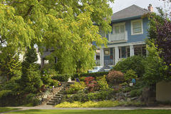 Large tree and house residential area Seattle WA. Royalty Free Stock Photos