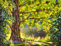A large tree lit by sun painting, a sunny landscape. Beautiful sunny forest. A large tree lit by sun - original painting, a sunny landscape. Beautiful sunny Royalty Free Stock Images