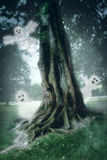 Large tree in the mist in the magic forest Royalty Free Stock Photos