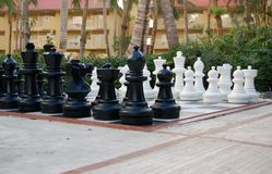 Large Tropical Chessboard Stock Image