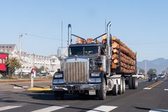 A large truck transports large trunks on the coast of Oregon, USA. stock image