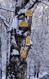 A large trunk of snow-covered wood on which are made of plywood round, carved Windows and doors for children to play. royalty free stock images