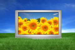Large TV Outside in a Fantasy Landscape Setting Stock Photo