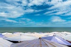 Large umbrella crowded along Cha-Am beach Royalty Free Stock Photo