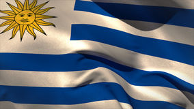 Large uruguay national flag waving. Filling the screen stock video