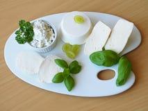 Large variété de fromages frais du plat de porcelaine Photographie stock libre de droits