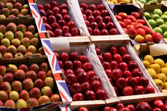 Apple varieties Stock Photography