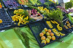 A large variety of ripe and juicy fruits in plastic boxes on the background of the green table. The concept of delicious and. Healthy food stock photos
