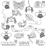 Large Vector Set of Cute Cartoon Bugs Line Art stock illustration