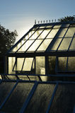 Large Victorian style garden greenhouse. Stock Photos