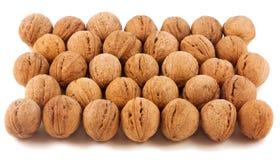 Large walnut  isolated. On the white background Royalty Free Stock Photo