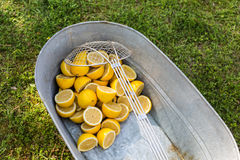 Large wash tub with lemon halves. On green grass outdoors royalty free stock photo