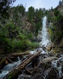 Large Waterfall in mountain surrounded by green trees, brunches and rocks stock images