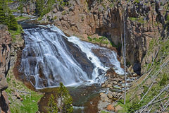 Large waterfall in Yellowstone National Park. Stock Photos