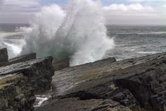 Large wave crashing at Mistaken Point