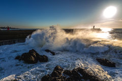 Large wave in Porto Stock Images