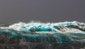 Large waves with sharp gusts of wind. stock photography