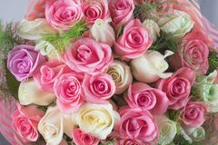 Delicate bouquet of roses stock photos