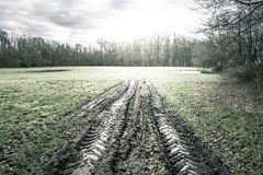 Large wheel tracks in the mud on a green field Royalty Free Stock Photos