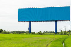 Large white advertising billboard in green rice field. for desig Stock Images