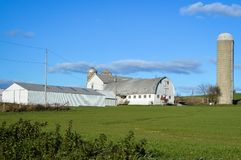 White Barn with Silo in Wisconsin Countryside royalty free stock image