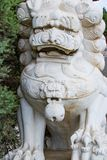 Large Stone Lion. A large, white Chinese lion carved into a white rock guards the entrance to a temple Stock Photos