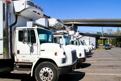 Large, White Refrigerated Trucks, all in a Line royalty free stock images
