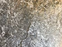 The large white stone surface pattern royalty free stock images