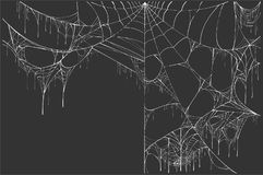 Large white torn spider web on black background. Halloween Scenery stock illustration