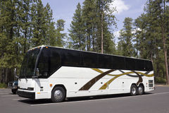 Large White Tour Bus In Forest Parking Lot Stock Photo