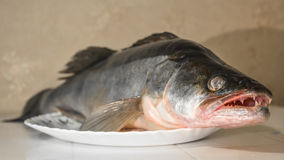 A large whole fish on a platter.  Royalty Free Stock Photography