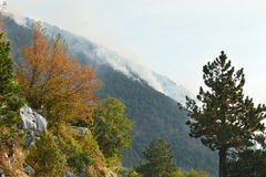Large wildfire in mountain Royalty Free Stock Photo