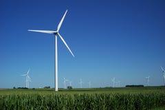 Large Wind Farm in Corn Field. An array of wind turbines in a corn field Stock Images