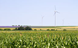 Large wind turbines on agricultural field. Some large wind turbines on a wide agricultural field. This image is good for energy and environment web and print Royalty Free Stock Images