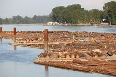 Large Winding Log Boom and River stock images
