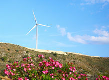 Large windmill on the hill sunny day Stock Photography