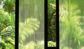 Large window. On the summer stock image