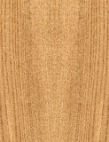 Large wood texture Stock Images