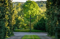 Large, wooden cross on the main path of a cemetery, framed by trees Royalty Free Stock Photo