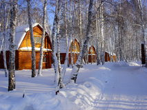 A large wooden house in a Siberian village. In winter day in the forest Stock Image