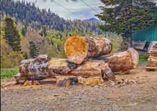 Large wooden logs with mountain forest background Royalty Free Stock Images