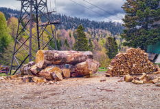 Large wooden logs and pile of firewood with mountain forest background Stock Photos