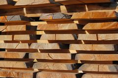Large wooden planks stacked in racks for drying under the open sky in an industrial area. Timing of wood for carpentry. Manufactur. E of furniture and wood Royalty Free Stock Photo