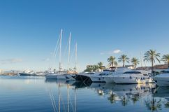 Large yacht harbor stock photo