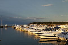 Large yacht harbor in the sunrise Royalty Free Stock Images